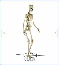 12 Foot FT Tall Giant Skeleton With Animated LCD Eyes Halloween Prop Sold Out NEW