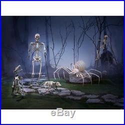 5 Ft Poseable Skeleton Halloween Decoration Life Size LED Eyes Light Realistic