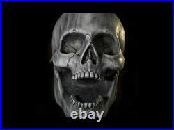 GIANT Stone-Like Skull Prop Skeleton Head Halloween Haunted House Hanging HUGE