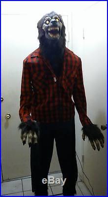 HALLOWEEN PROP ANIMATED LIFESIZE WEREWOLF. HUGE 6.2 feet tall. Howls, lights