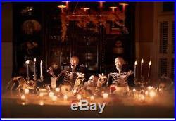 Halloween Skeleton Fully Assembled 5 Ft Life Size Prop Decoration LED Lit Eyes