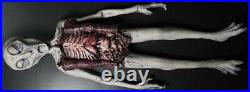Life Size Alien Autopsy Prop Martian UFO Roswell Area 51 Dead