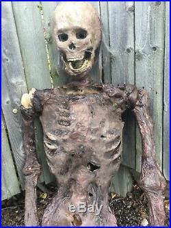 Skeleton Corpse Zombie Life Size Halloween Prop Decoration Realistic Pro Series