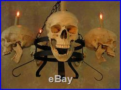 Skull Chandelier, Halloween Prop, Human Skulls/Skeleton