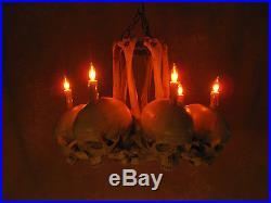 Skull Hip Bone Chandelier, Halloween Prop, Human Skeletons, NEW