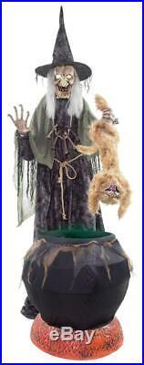 VIDEO! LifeSize ANIMATED WITCH Cauldron Cat HALLOWEEN PROP OUTDOOR HOCUS SPIRIT