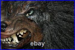 Werewolf Mask with Werewolf Hands Bad Moon Werewolf The Horror Dome HDM323/DWH25