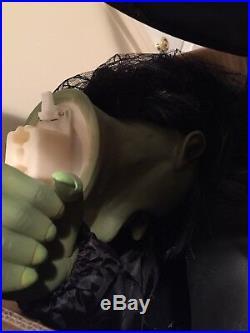 Wicked Witch Animatronic Gemmy Halloween Spirit Halloween! Rare Bnib